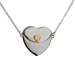 Petite Secret Message Heart Envelope Locket with Gold Heart